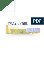 Curs Febra