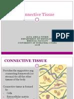 87164_HI 2.2 - Connective Tissue