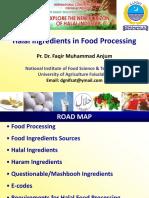 Halal Ingredients in Food Processing
