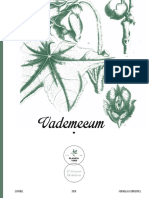Vademecum_ Digital_ES.pdf