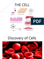 cell-discovery (1).ppt