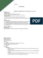 conversiunea_proiect_didactic_viii.docx