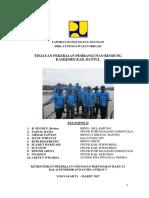 Laporan Kelompok II. paparan.docx