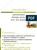 Biomoleculas carbohidratos