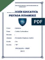 ÁCIDOS CARBOXÍLICOS.docx