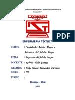 DEPRESION ADULTO MAYOR.docx