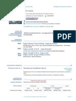 ecv_template_fr model.docx