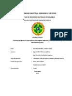 INFORME TECNICO N° 003-TORNILLO.docx