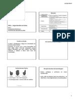 1551895105007 libras.pdf
