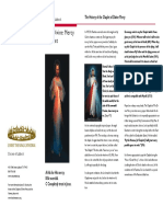 Divine Mercy Brochure