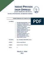 PRIMER SEMINARIO.docx