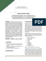 Mitosisinf.docx