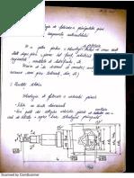 FRA Arbore primar.pdf