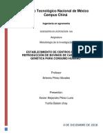 ESTABLECIMIENTO DE CENTROS DE CRÍA Y REPRODUCCIÓN DE BOVINOS DE CARNE EN ALTA GENÉTICA PARA CONSUMO HUMANO.docx