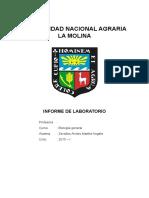 277035935-Informe-Microscopio-UNALM.docx