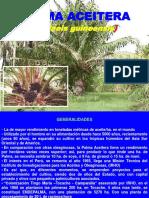 C.PALMA ACEITERA 14.pdf
