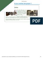 TCO04_Contenidos.pdf