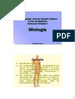Anatomia Cadaver musculos
