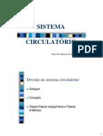 Sistema Cardiovascular 18 01