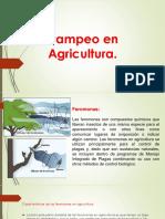 Trampeo en Agricultura