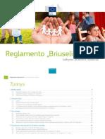 BriuselisII bis praktinis vadovas.pdf