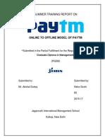 paytm project.pdf