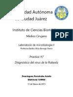 ANIELA-MICROLAB-RUBEOLA.docx