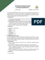 CONSULTA INGENIERIA.docx