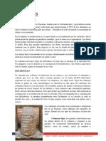 colmenas-informe