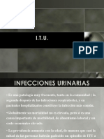 infecciones urinarias.ppt