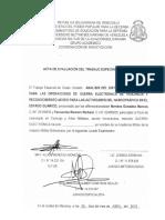 Anexo L_estructura Del Informe de Practica Profesional