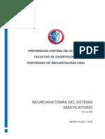 Neuromusculatura masticatoria.docx