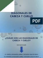 Diag MMII, Cabeza y Cuello, Tronco