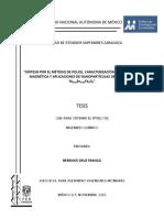 tesis_cruz_franco.pdf
