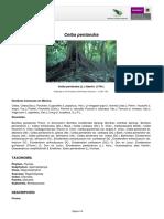 CeibaPentandra.pdf