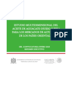 2_Aceite_de_Aguacate__Ejecutivo_-.pdf