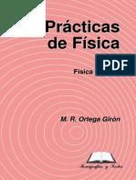 PRACTFG.PDF