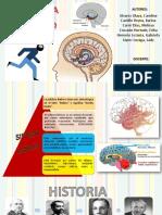 Sistema limbico.pptx