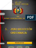 JURISDICCION ORDINARIA-RONALD T..pptx