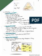 Mind Mapping Cholelitiasis