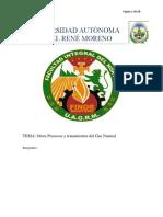 informe de gas grupo 6.docx