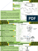 Bambu Sistema Autoportante
