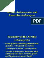 Aerobic Actinomycetes and Anaerob Actinomyces