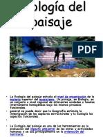 Ecóloga Del Paisaje ghfd gfdg