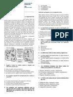 EXAMEN LA CELULA BIOLOGIA.docx