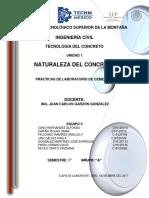 practical final cementos.docx
