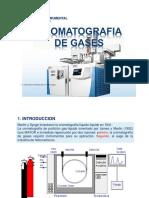 HPLC Y GASES [Modo de compatibilidad].pdf