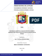 Cahuana_Pineda_Felix_Dixon puno pasar tesis.pdf
