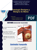Mama, Patologia Beninga Lesiones Premalignas y Cancer de Mama