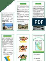 TRIPTICO REGIONES NATURALES.docx